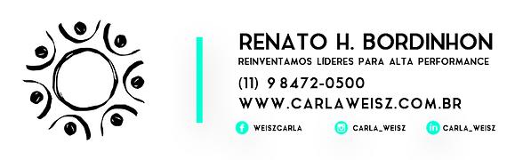 02 - assinatura email renato.png