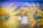 sunflowerTWG_nowm (1 of 1).jpg