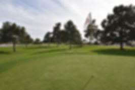 Golf_Pitch_Putt