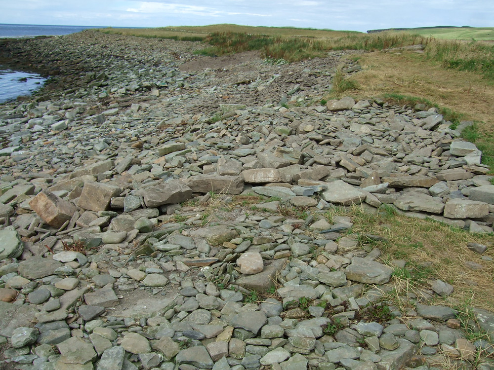 Swandro when we arrived this year