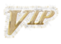 2020 VIP.png