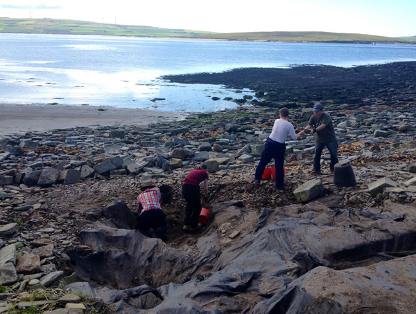 Clearing backfill from the terram membrane protecting the site at Swandro, Orkney