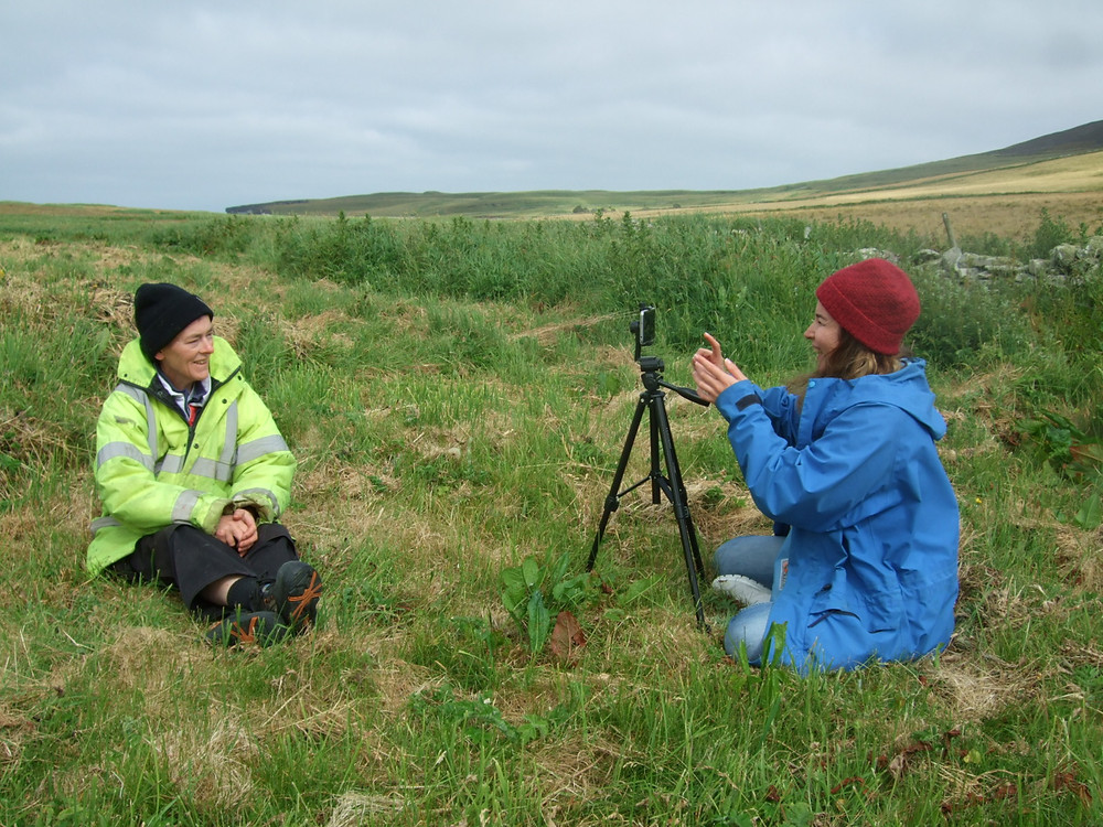 Interviews at Swandro