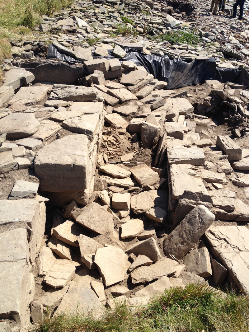 Animal bones in the upper fills of the chambered tomb passageway at Swandro