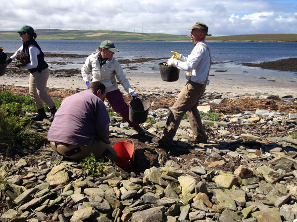 Hard at work uncovering the site at Swandro, Orkney