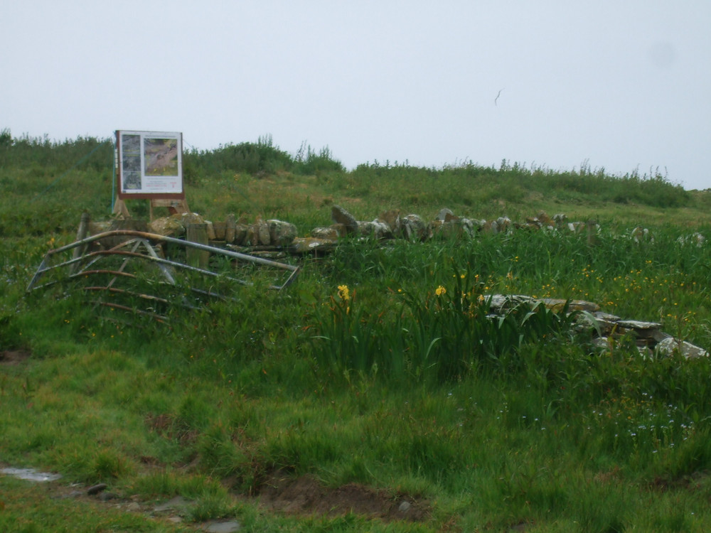 Our welcome to Swandro board
