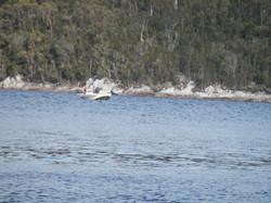competitors fishing