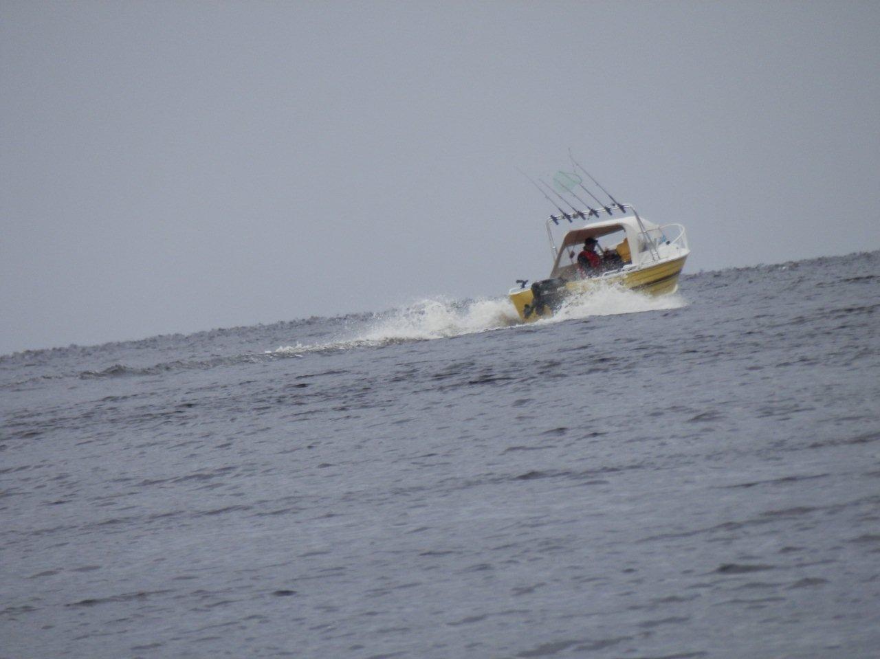 davids boat for website