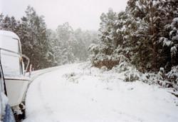 snow332