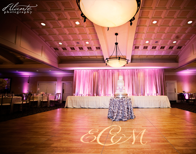 photo+gallery_draping_Tags+-+Champagne+Backdrop.jpg