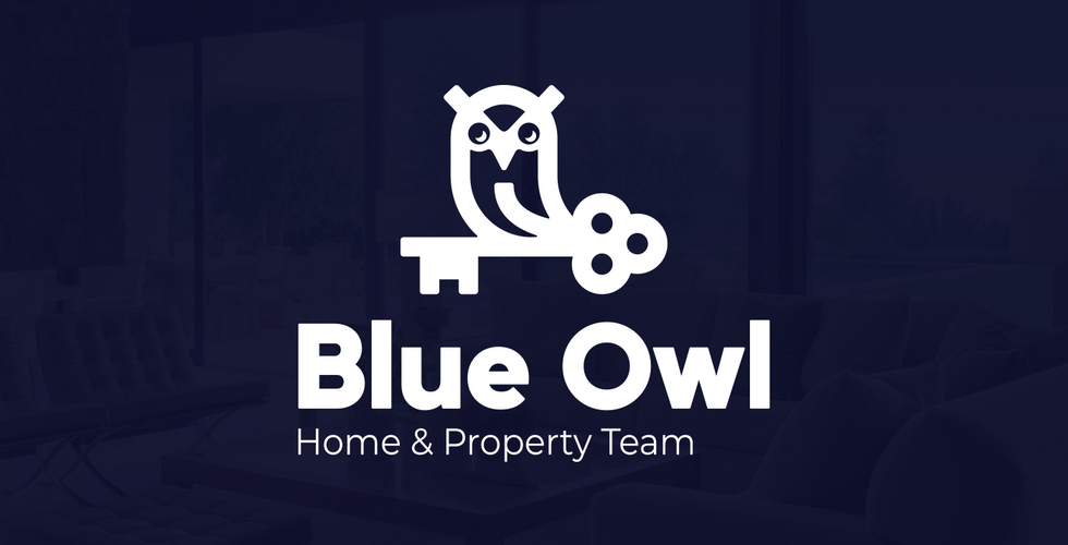 Blue Owl Brand & Naming