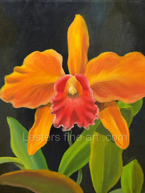 "Garden Bloom,  Oil , 20""x16"""