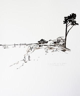Promenade au bassin Cap Ferret