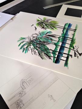 Dessin des Palmiers du Brésil