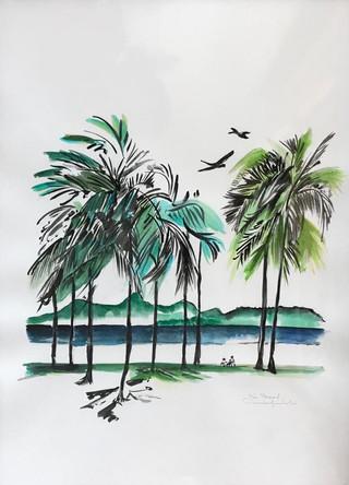 Les Palmiers du Brésil