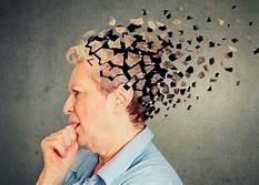 Nutrición como complemento en el Abordaje de Enfermedades Neurodegenerativas