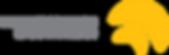 Wireless Solution logo
