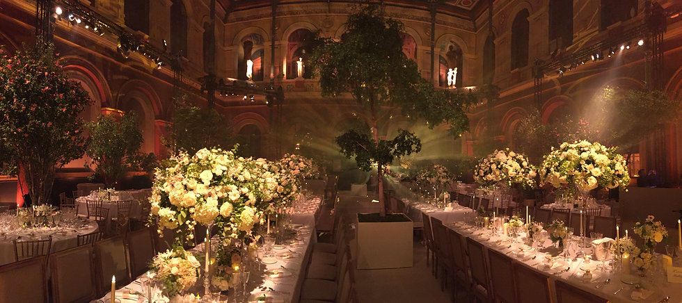 Sorbonne lumière déco vegetal