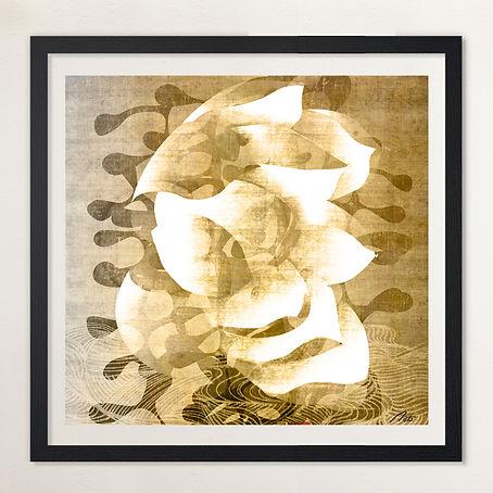 Ghost Lotus 2.jpg