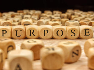 The Reason for Purpose