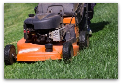 How To Manage The Lawnmower Of Life blog article by Karan Scott of Karan Scott Coaching | Kettering 01536 601749