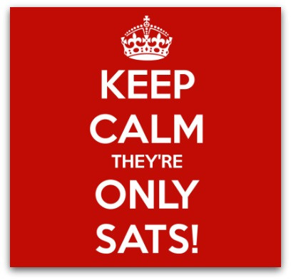 Mentoring Kids Through SATS blog article by Karan Scott of Karan Scott Coaching | Northants 01536 601749