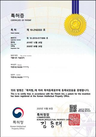 특허 제 10-2163333 호