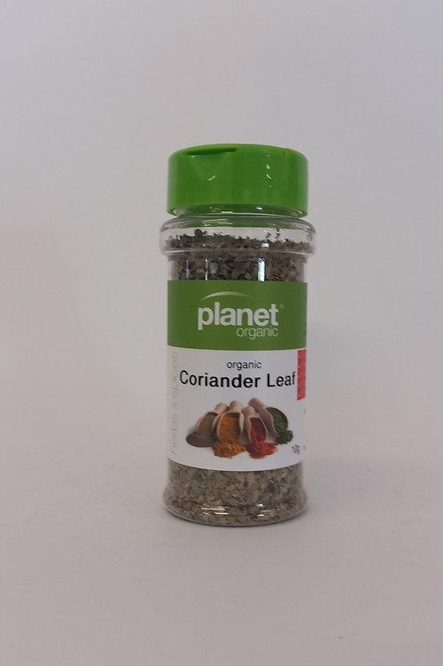 Coriander leaf 10g