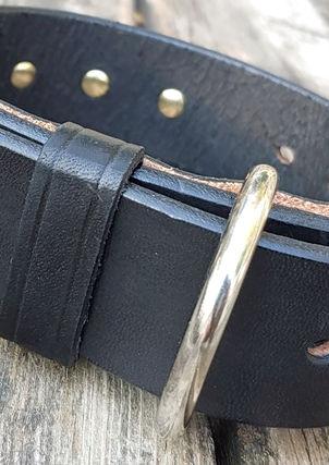 Custom Dog Collar w/Spikes