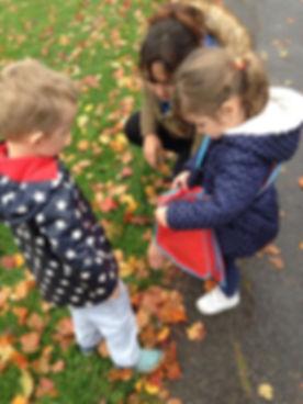 Autumn walk.jpg