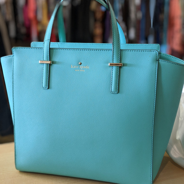 Gorgeous Robins Egg Blue Kate Spade