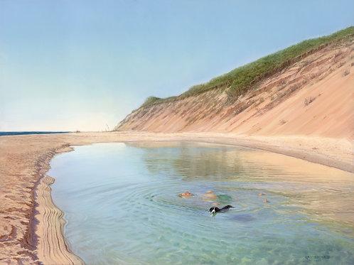 Tide Pool Float, Long Nook Beach