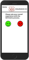 EZi survey screen rate experience.png