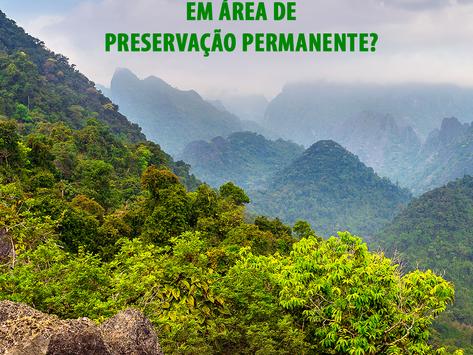 O que é intervenção em área de preservação permanente?