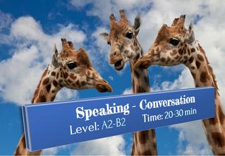 Building a conversation