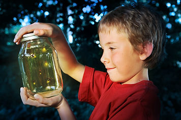 Boy with a jar of fireflies.jpg