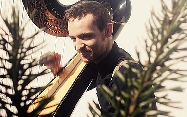 Harp Teacher, Wedding Harpist & Event Harpist London Surrey Sussex Berkshire Kent Essex
