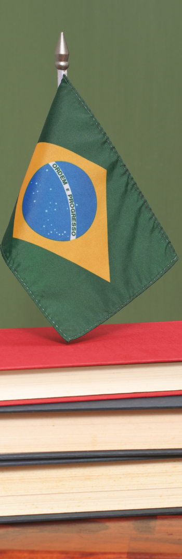 profesor de portugués brasileño.png