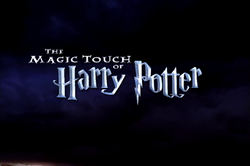 THE MAGIC TOUCH OF HARRY POTTER