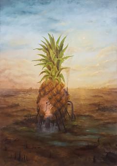 Last Pineapple