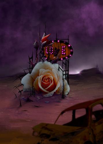 Rose of love