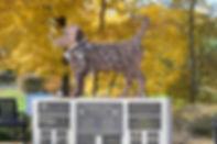 Dog Memorial (1).jpg