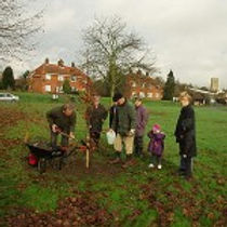 Photo of Tree Planting on King's Green to celebrate the Queen's Golden Jubilee