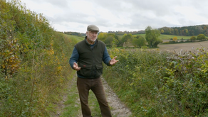 Our heritage at risk - Hedgerows and the Dacorum Local Plan