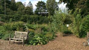 Tring Community Food Garden