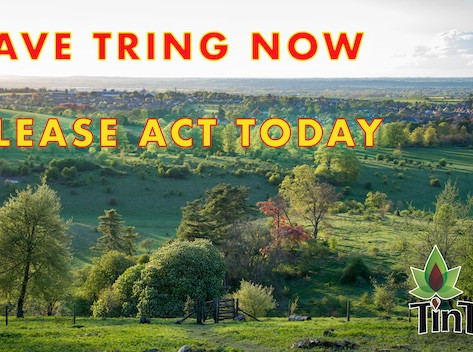 Act now on the Local Plan