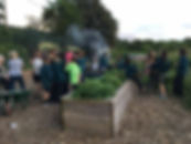 Local scouts work in the community garden