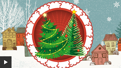 Reality Check: Your Christmas tree's carbon footprint