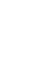 REMAX-Hall-of-Fame-2017(white).png