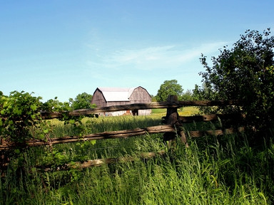 Farm Real Estate Considerations - Crucial for Buyers & Sellers